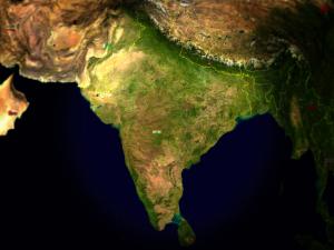 Dear-India